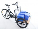 Tamar cargo tricycle is load platform
