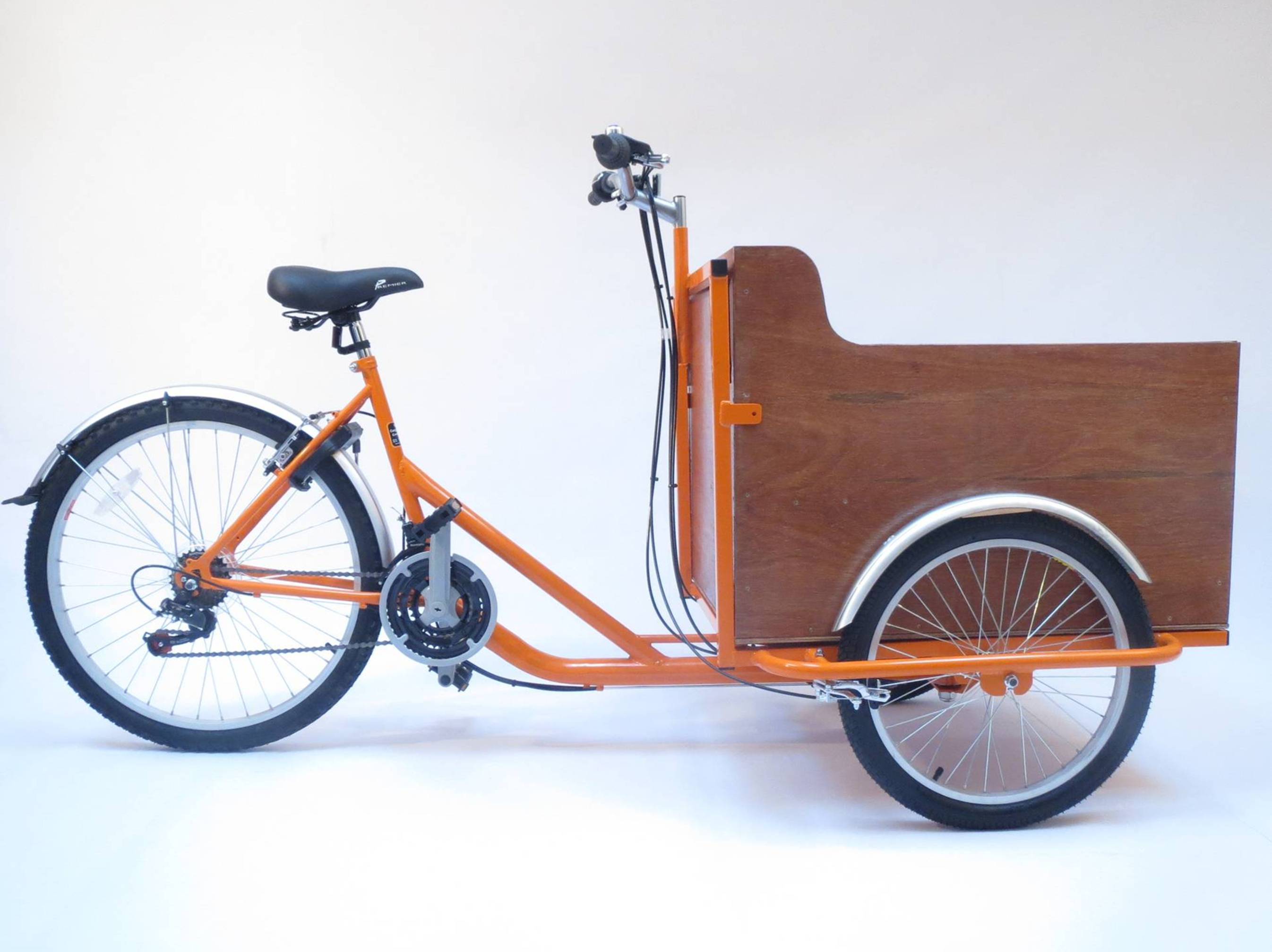 Bike Cargo Carrier : Little people carrier the cargo trike for carrying