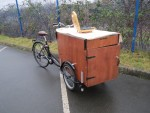 Removable canopy for transportation